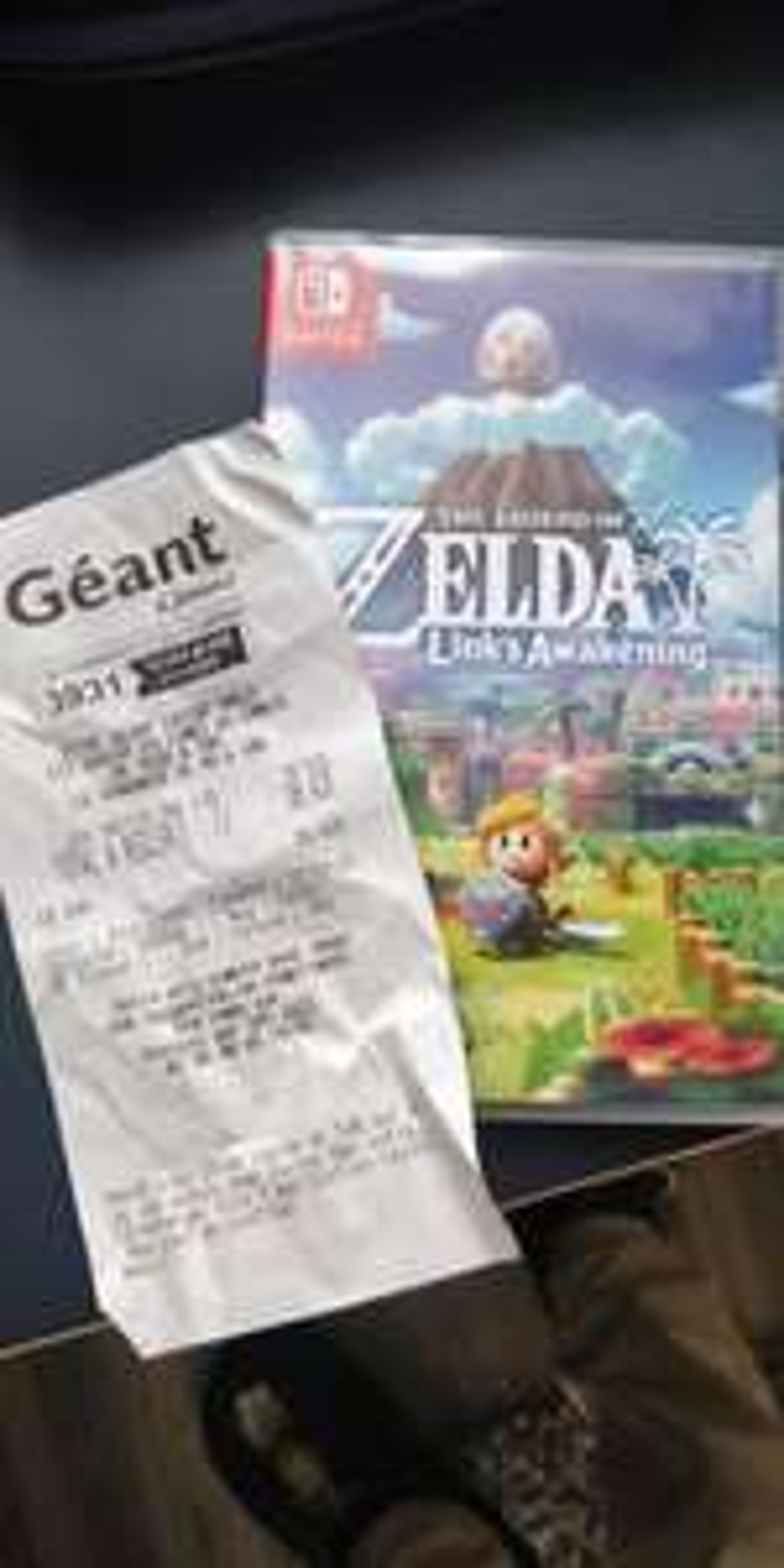 The Legend of Zelda Link's Awakening sur Nintendo Switch - Brest (29)