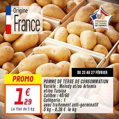 Filet de 5 kg de pommes de terre de consommation Origine France Catégorie 1 (5 kg)