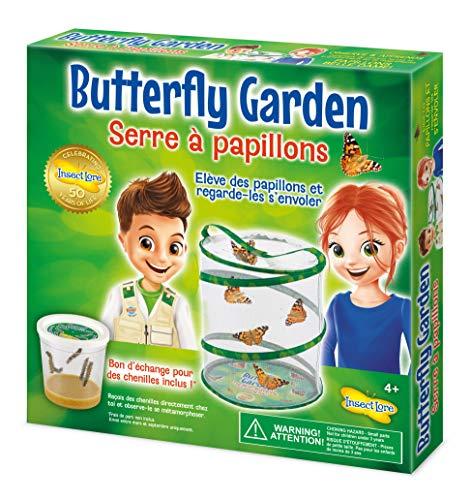 Kit d'expérience sciences naturelles Insect Lore Serre à Papillons 8010FR