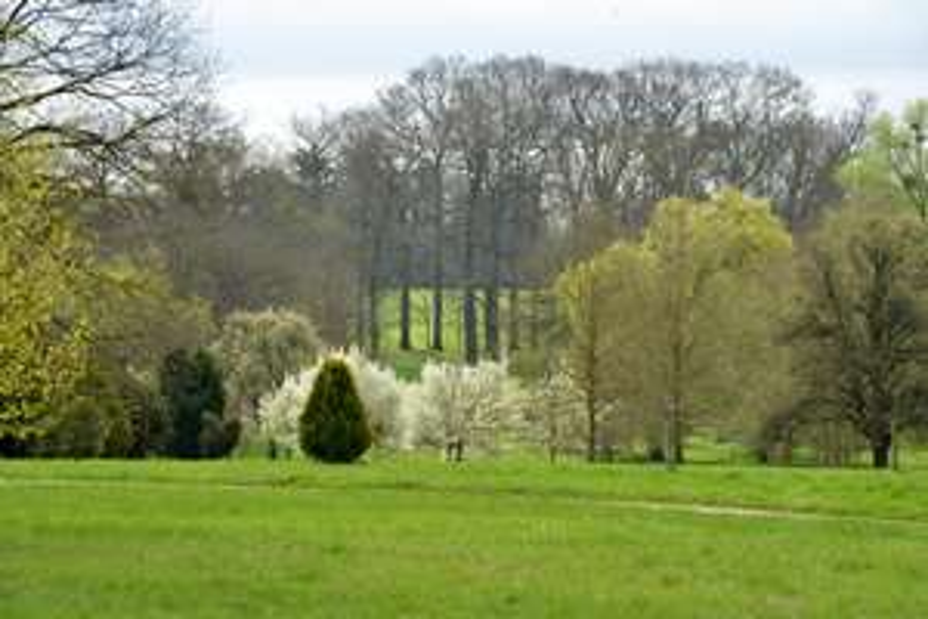 Visite gratuite de L'Arboretum de Chèvreloup au Chesnay-Rocquencourt (78)