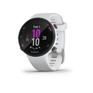 Montre GPS Garmin Forerunner 45S - silicone, GPS (Frontalier Suisse)