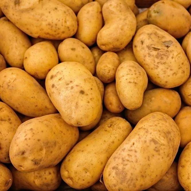 [Étudiants] Distribution gratuite de 5 kg de Pommes de terre & de Briques de lait - Lille (59)