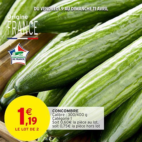 Lot de 2 concombres catégorie 1 (Origine France)