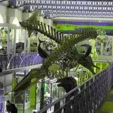 [Étudiants] Entrée gratuite au Musée d'Histoire Naturelle, au Palais des Beaux-Arts et au Musée de l'Hospice Comtesse - Lille (59)