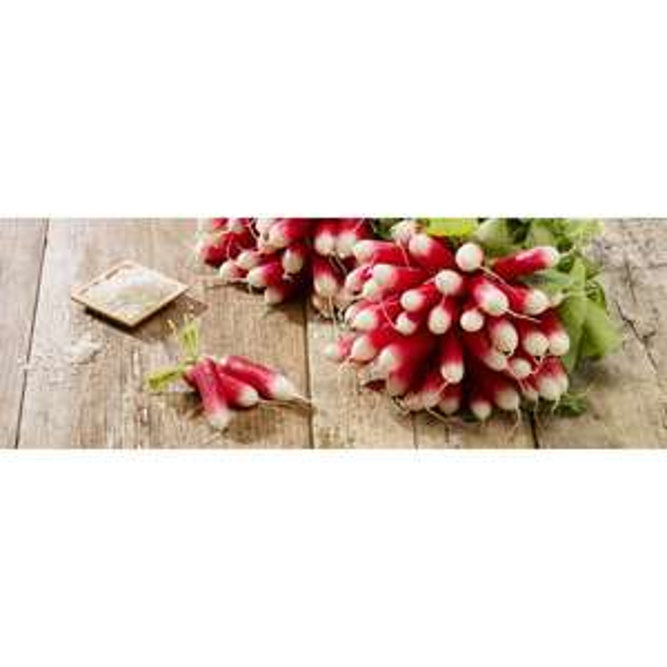 Lot de 2 bottes de radis roses - Catégorie 1, Origine France