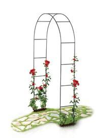 Arche pour rosier ou tuteur colonne