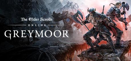The Elder Scrolls Online : Greymoor Update sur PC (Dématérialisé)