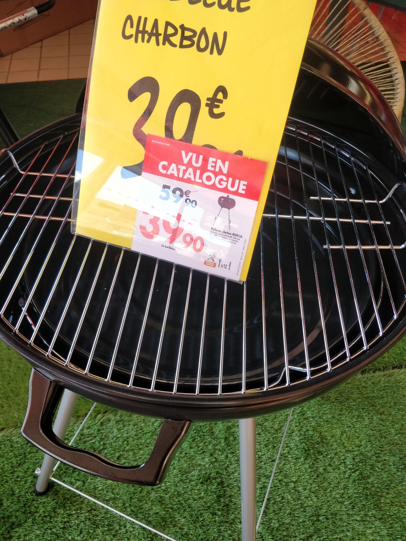Barbecue charbon 55cm de diamètre - Lagnieu (01)