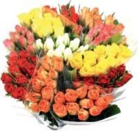 Bouquet de 10 roses unies - plusieurs coloris