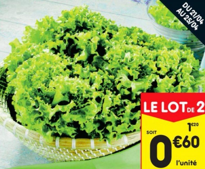 Lot de 2 salades Batavia catégorie 1 Origine France