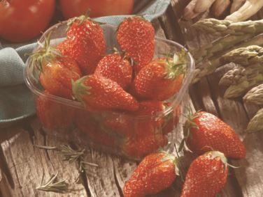 Barquette de fraises Gariguette - Catégorie 1, Origine France (250g) - Saint Orens (31)