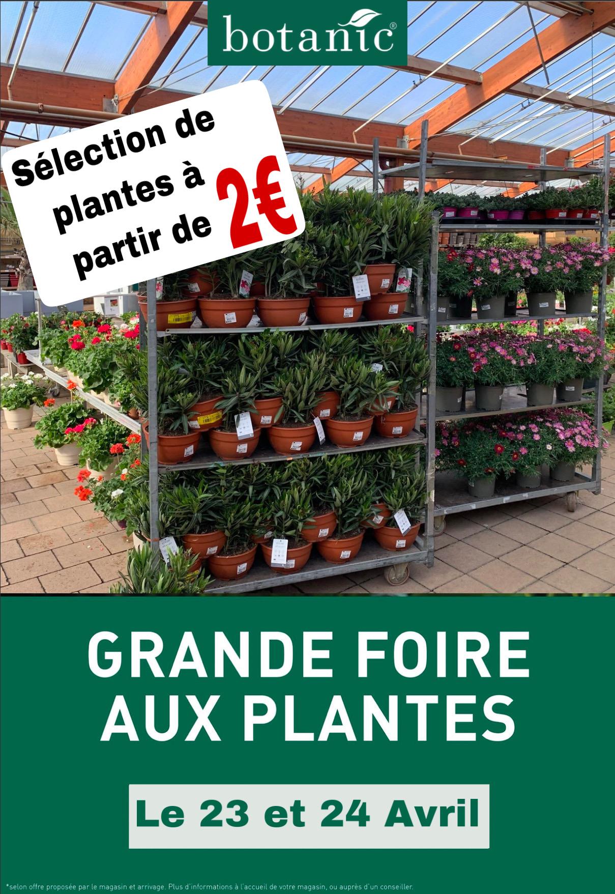 Sélection de plantes en promotion à partir de 2€ - Vitrolles (13)
