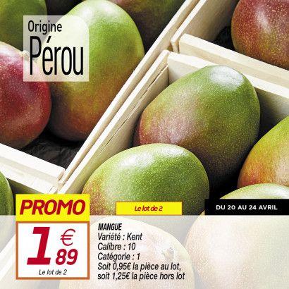 Lot de 2 Mangues - Variété Kent, catégorie 1, Origine Pérou