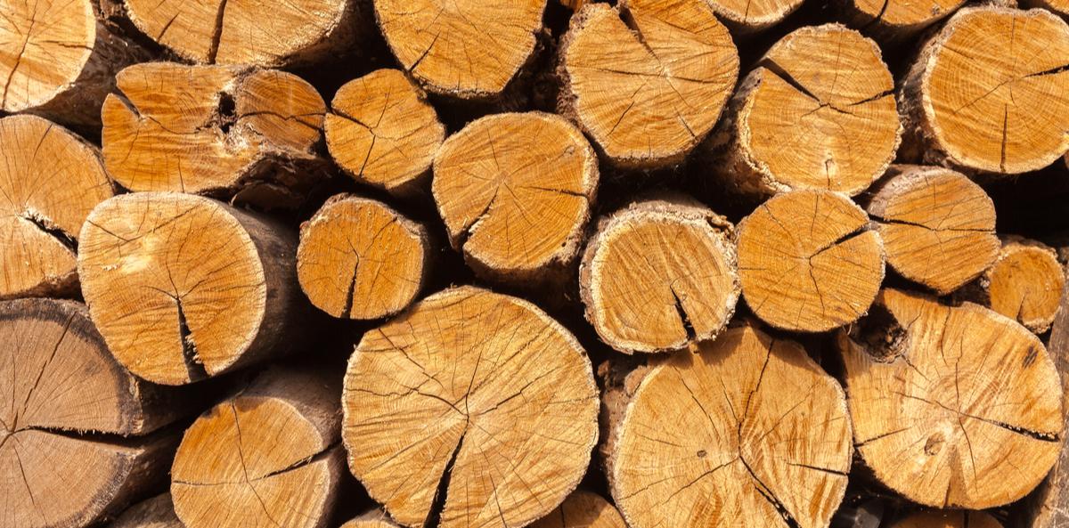 Distribution gratuite d'un stère de bois - Menucourt (95)