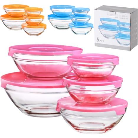 Lot de 5 boîtes hermétiques en verre avec couvercles - différents contenants