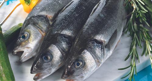 Sélection de poissons en promotion - Ex : Bar d'élevage (le kilo)