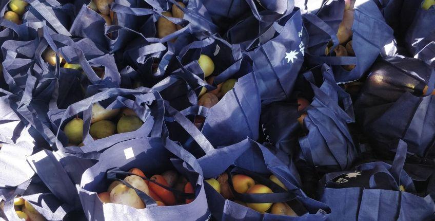 [Étudiants] Distribution Gratuite de Paniers de 5/6 Kg de Fruits et Légumes Bio - Aubervilliers (93)