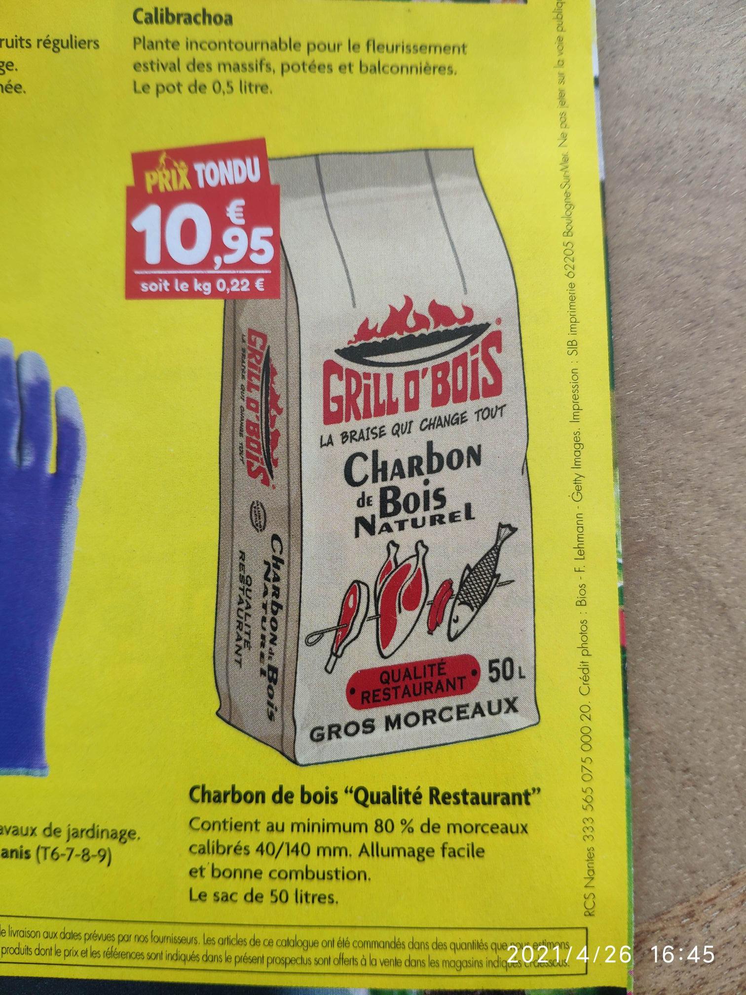 Charbon de bois Grill O' Bois Qualité Restaurant, 50L - Point Vert Bretagne