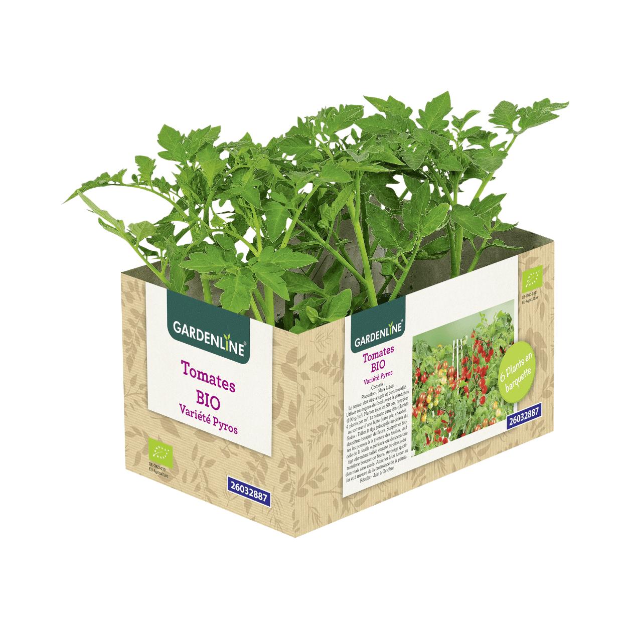 6 Plants de légumes bio Gardenline