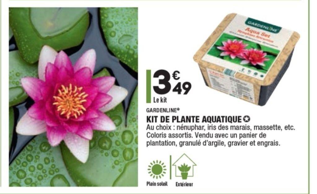 Kit de plante aquatique