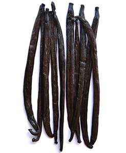10 Gousses fraîches de vanille Native Vanilla - 14 à 20cm (Vendeur Tiers)