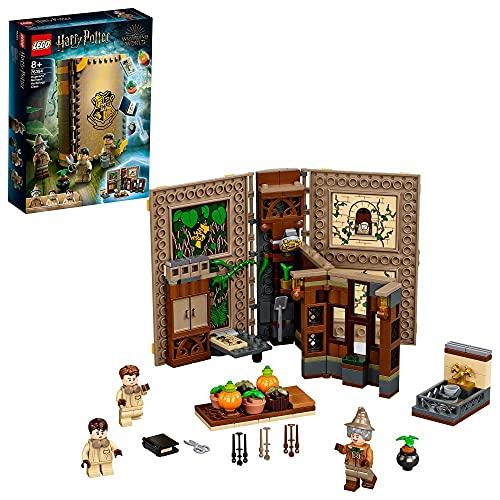 Jeu de construction Lego Harry Potter Poudlard : le cours de botanique (76384)