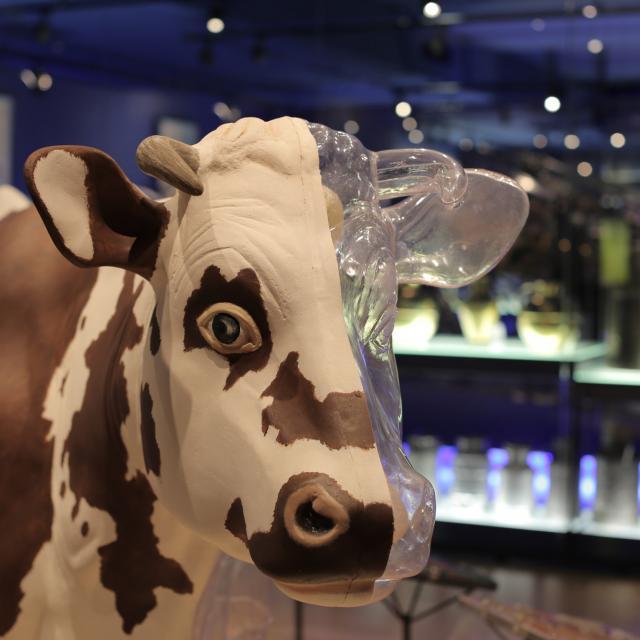 Visite guidée gratuite de la cité du lait - Laval (53)
