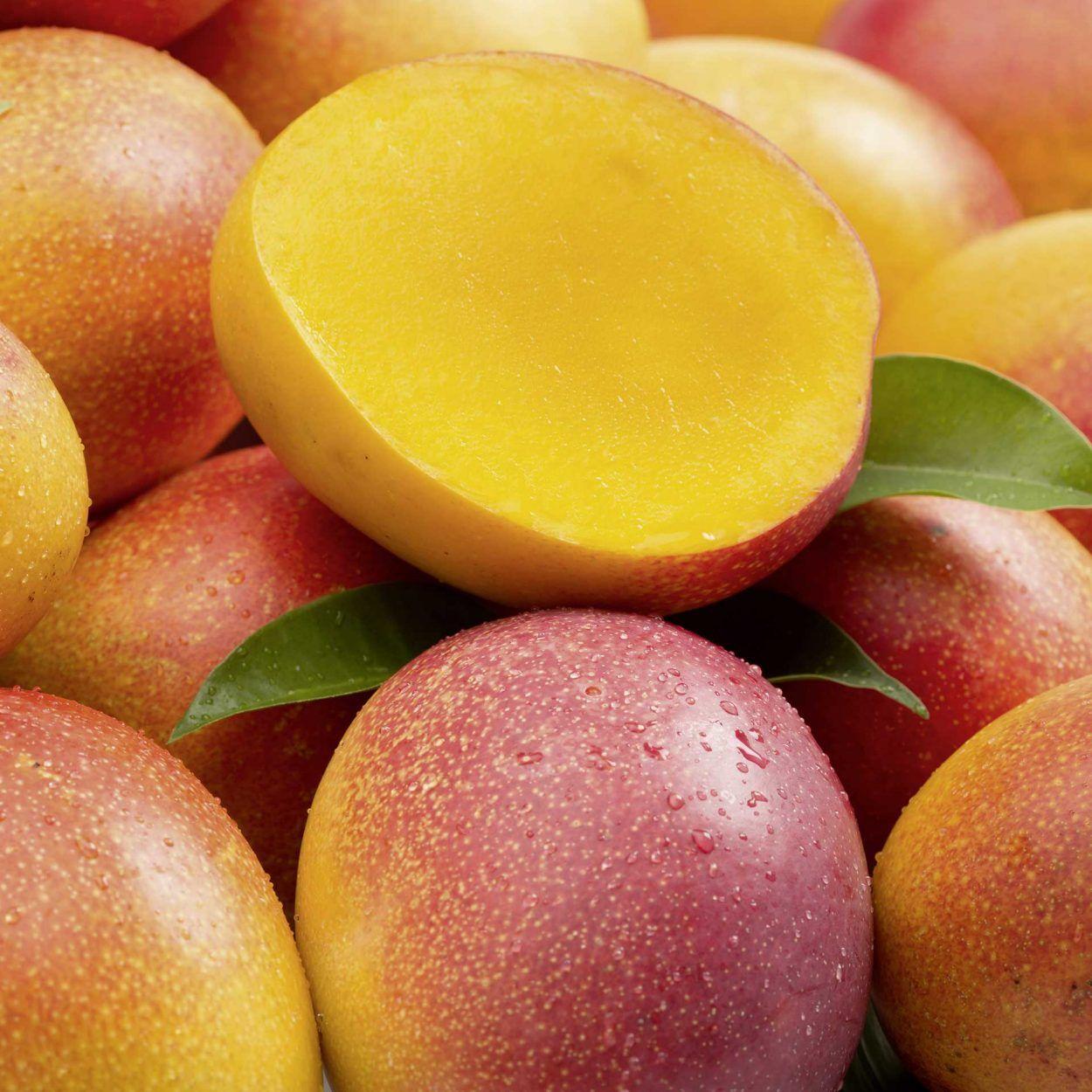 Mangue Kent Catégorie 1 Origine Afrique (le kilo)