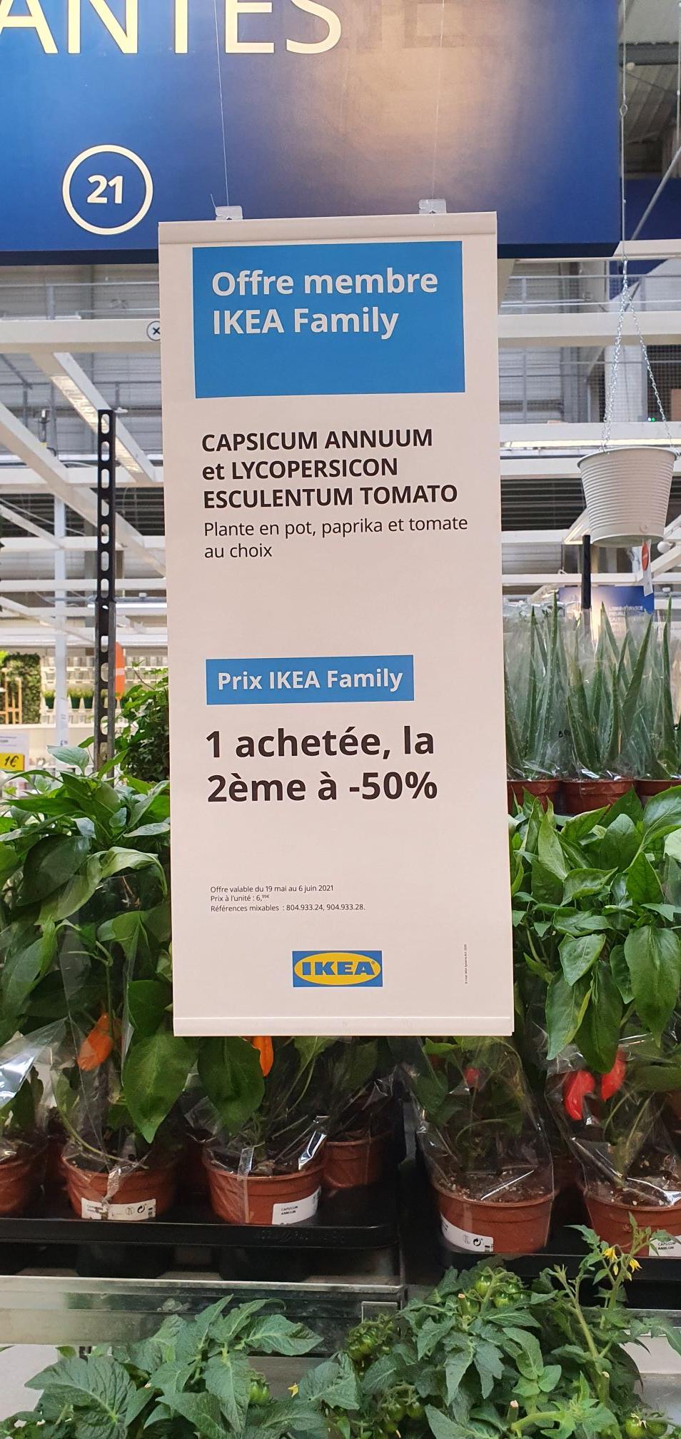[Ikea Family] Une plante achetée = la seconde à 50% de réduction - Villiers-sur-Marne (94)