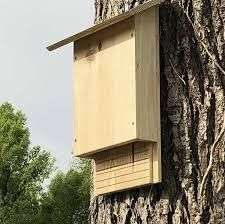 [Habitants] Distribution gratuite de nichoirs à chauves-souris - Tarnos (40)
