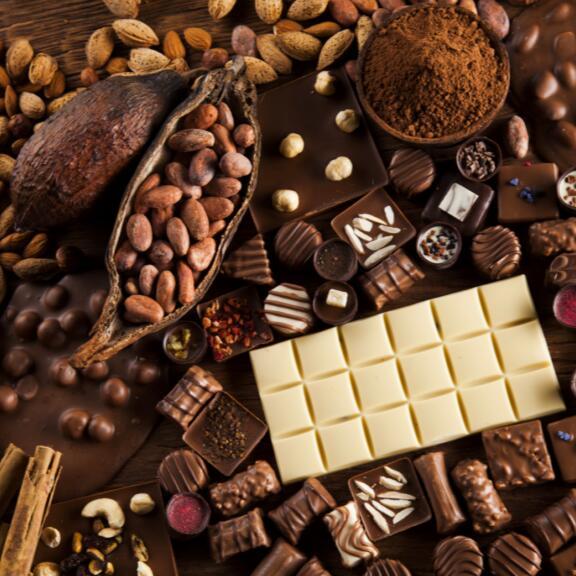 Entrée + Dégustation gratuite au Musée du Chocolat Bovetti - Terrasson-Lavilledieu (24)