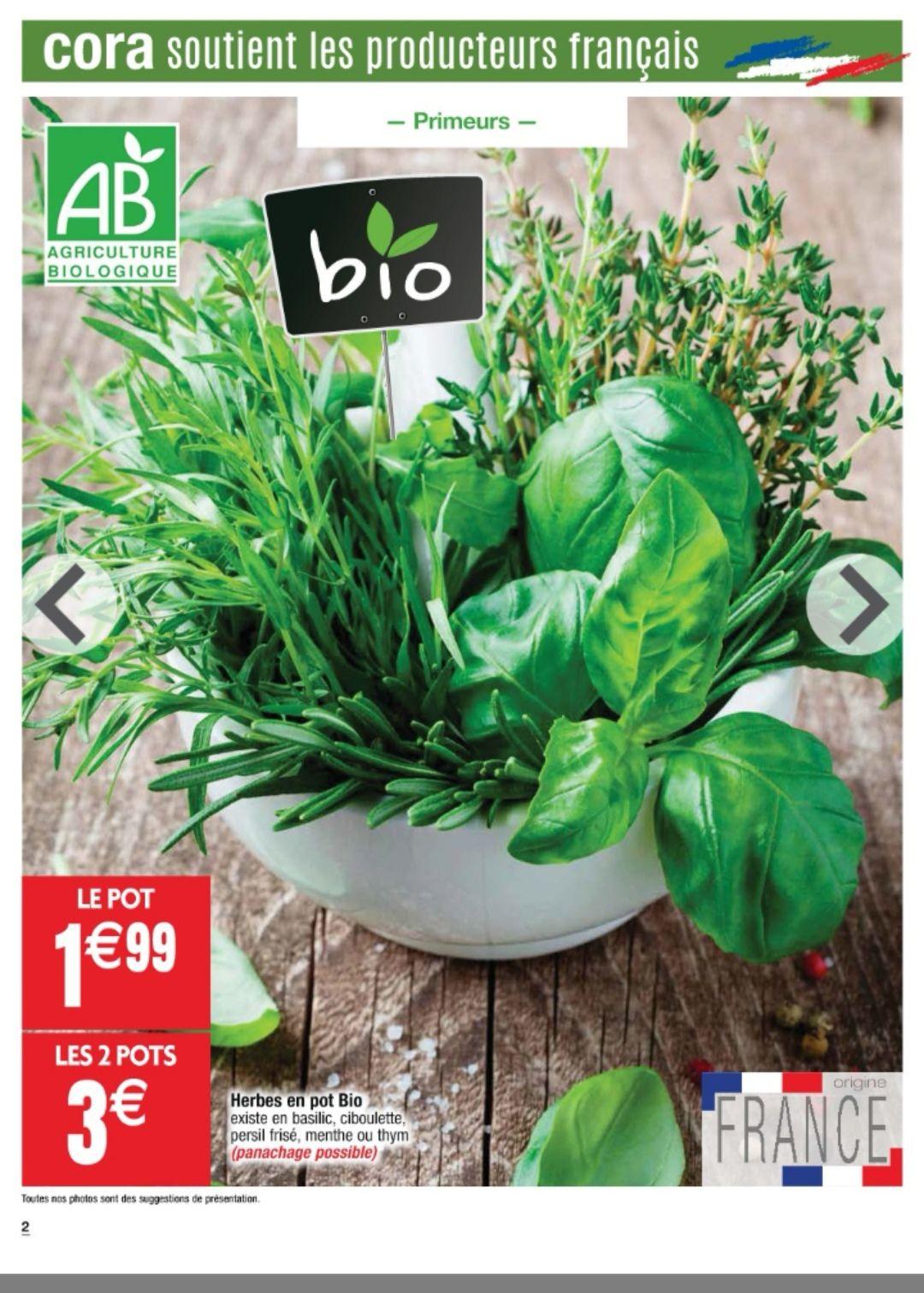 Lot de 2 pots d'herbes aromatiques BIO (Variétés au choix) - Origine France