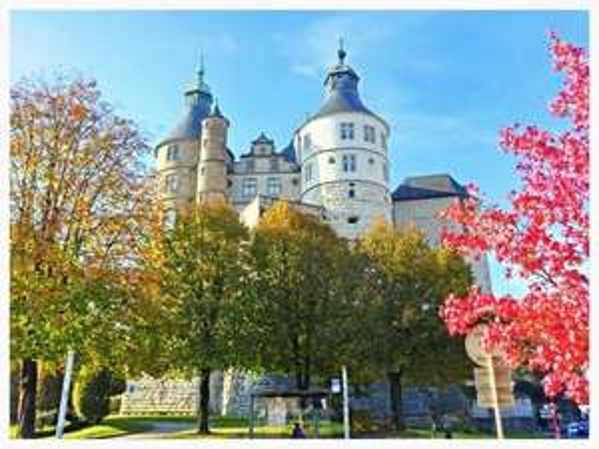 Entrée gratuite au musée du château des ducs de Wurtemberg et d'Art et d'Histoire - Montbéliard (25)