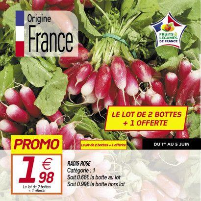 Lot de 3 bottes de radis roses - Catégorie 1, Origine France