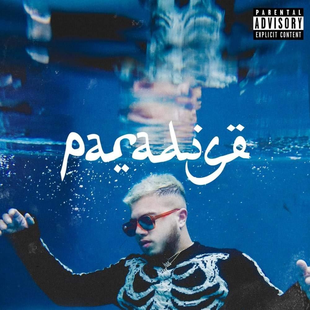 Vinyle Hamza - Paradise (vendeur tiers)