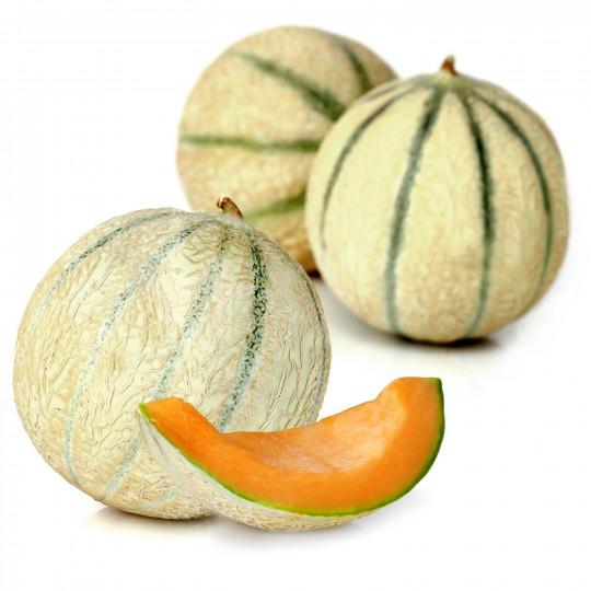 Lot de 3 Melons Charentais - catégorie 1