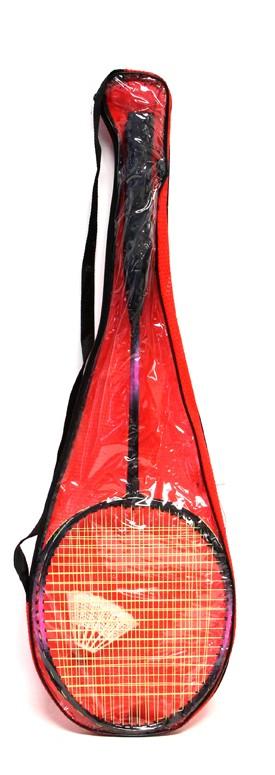 Set de badminton Premium