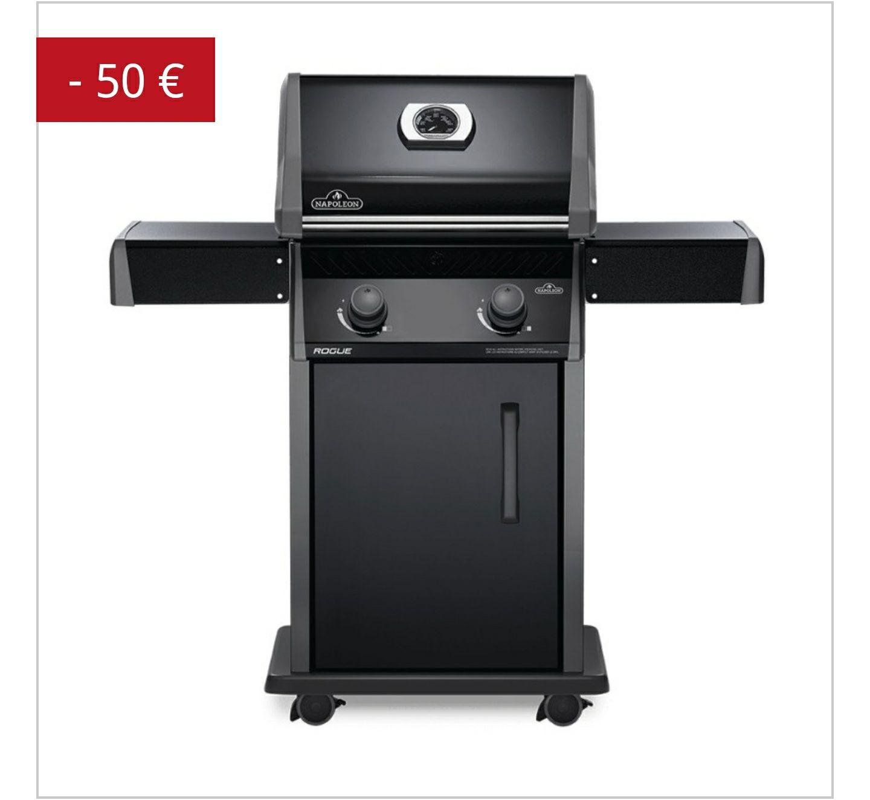 Barbecue au Gaz Napoleon Rogue 365-1 (desjardins.fr)