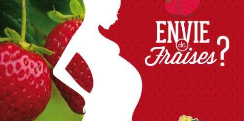2kg de fraises offertes aux femmes enceintes - Cueillette de Beaurains (Arras 62)