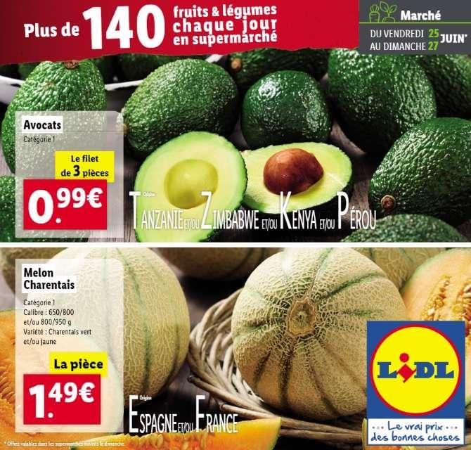Melon Charentais (pièce) - Catégorie : 1, Origine Espagne ou France