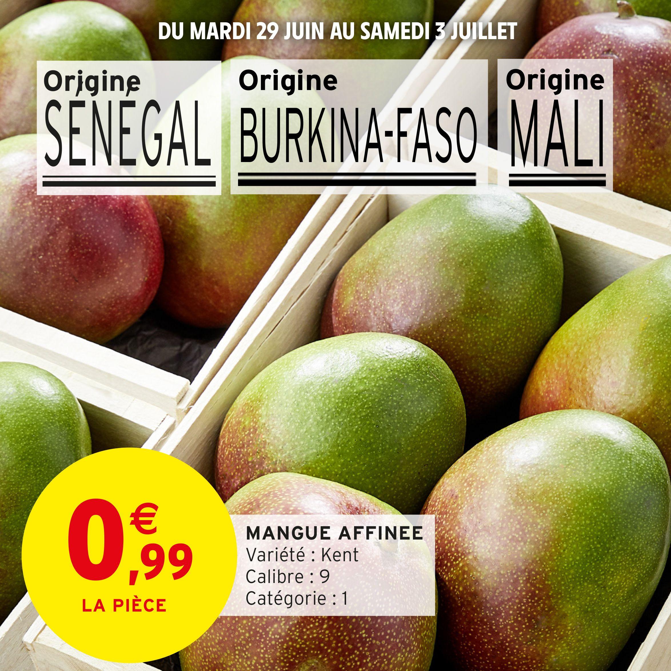 Mangue affinée Kent Catégorie 1 - Origine Sénégal, Burkina Faso ou Mali
