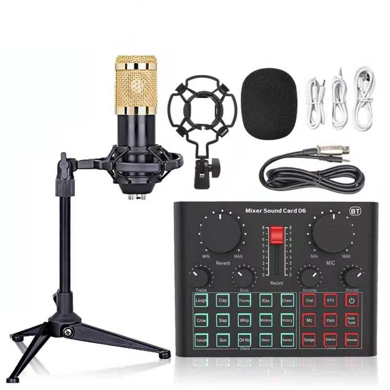 Microphone à condensateur BM800 + Carte son mixer D6