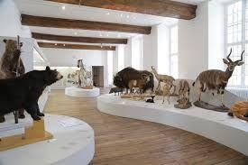 Entrée Gratuite dans tous les Musées : Exemple : Musée d'Histoire Naturelle - Troyes (10)