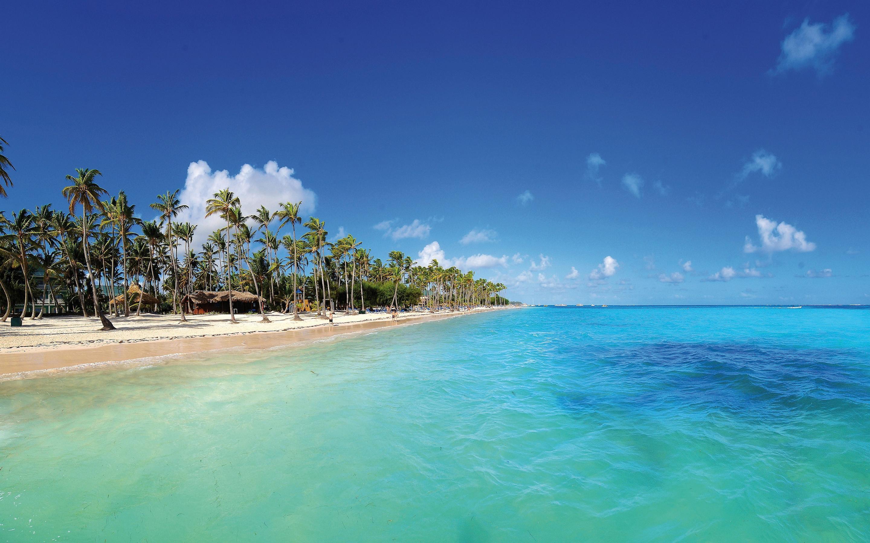 Vols A/R direct Bruxelles - Punta Cana - Ex : départ le 23 avril / retour le 30 avril