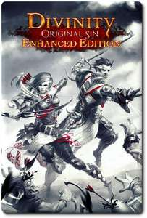 Divinity: Original Sin - Enhanced Edition sur PC