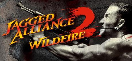 Bundle de 6 jeux sur PC (Jagged Alliance 2, Sol Survivor, Oniken...) + 1 album