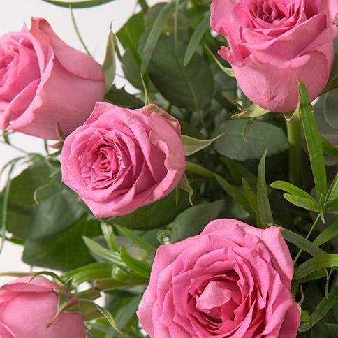 Bouquet de 12 roses (plusieurs coloris)