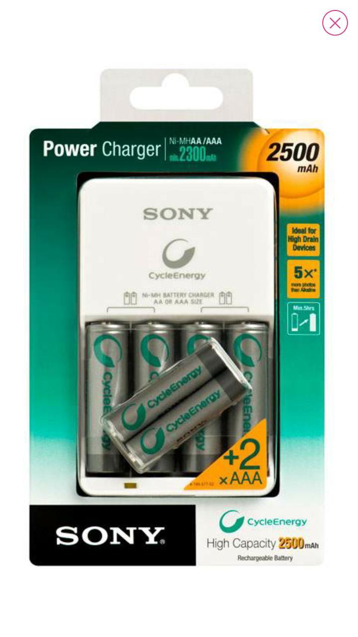 Chargeur Ni-MH 2500 mAh et 2 piles AAA LR3 et 4 piles AA LR6