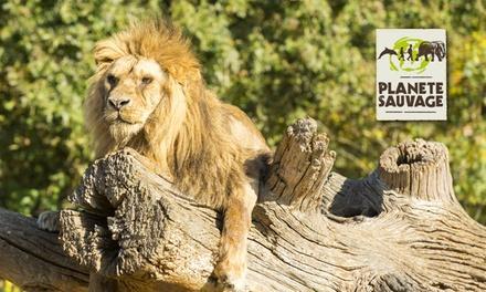 Une entrée tarif unique pour le Parc animalier de type safari et partie piétonne chez Planète Sauvage
