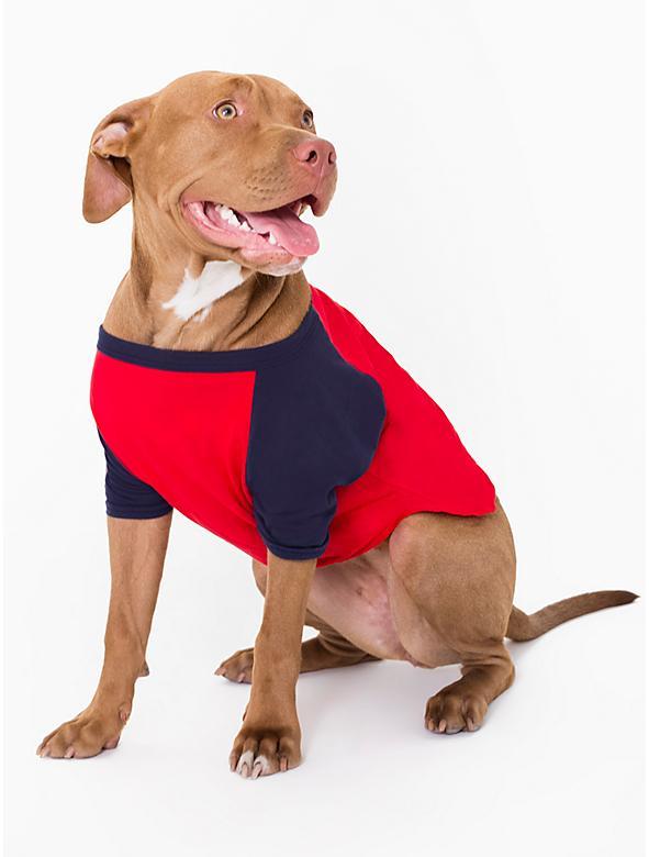 Tee-shirt pour chien manches raglan - Rouge (du XS au L)